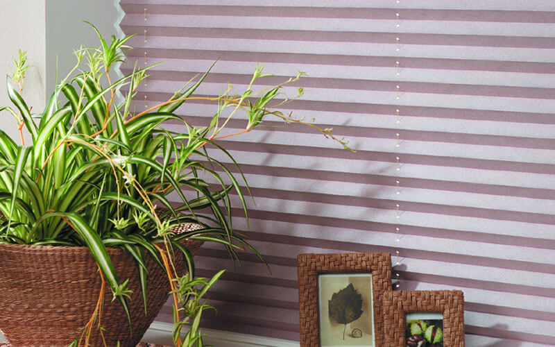 Get modern, pleated blinds from The Blind Shop, Canberra in vibrant colours - lavendar